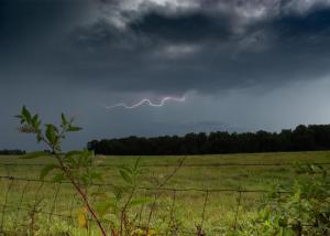 Lightening over the Pasture