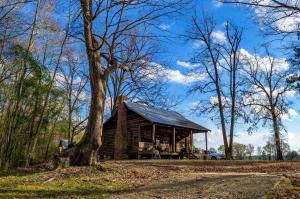 Cabin on Lynch's River